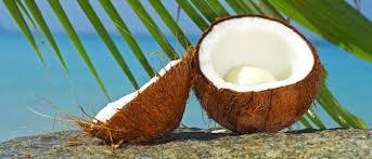 Olio di cocco per ricci nutriti e idratati.  Ecco perché usare quel che la natura ci offre